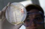 В США обнаружили супербактерию, устойчивую ко всем существующим антибиотикам