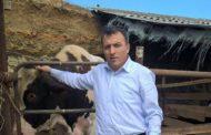 Закир Каидов: «Я из народа!»