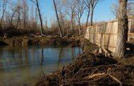 По факту самозахвата земельных участков в Эльтавском лесу возбуждено уголовное дело