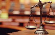 Суд в Астрахани приговорил хозяина собаки, загрызшей девочку, к штрафу