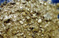 Стоимость золота растет в ожидании итогов референдума в Великобритании