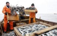 Вступил в силу первый в мире договор по борьбе с незаконным промыслом рыбы