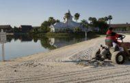 Аллигатор утащил двухлетнего мальчика под воду в парке Disney