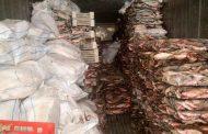 В Кизлярском районе обнаружено более 18 тонн рыбы частиковых видов
