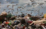 Минстрой: нелегальные свалки получают около 80% доходов от утилизации