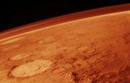 В Нидерландах на марсианской почве вырастили овощи