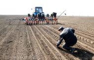 Дагестан завершил посевную кампанию, площади сева увеличены на 6%