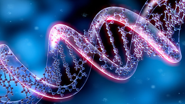 Ученые РАН создали программу для быстрого поиска тайн иммунитета
