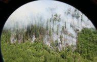 В Югре испытали новый гидросамолет-амфибию
