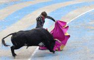 В Испании впервые за последние 30 лет бык убил тореадора