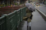 Непогода в Петербурге: деревья падают, а дорожные знаки