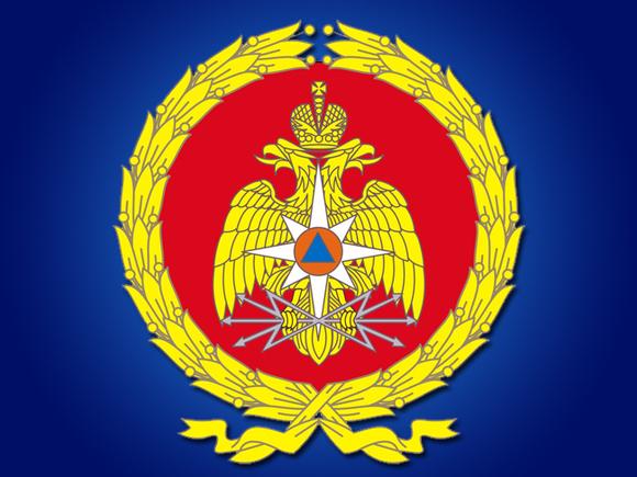 Путин урезал штат в территориальных органах МЧС на 6 тыс. человек