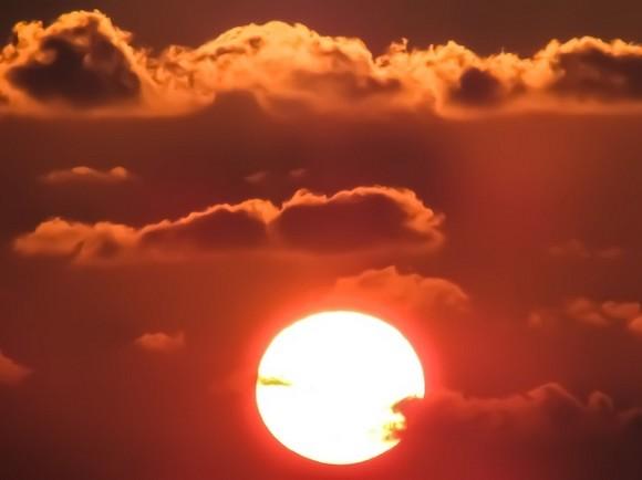 В Японии шесть человек скончались из-за жары
