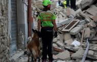 Число погибших при землетрясении в Италии достигло 247
