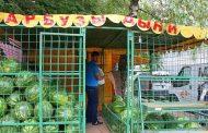 В мэрии Махачкалы придумали, как заработать на арбузах - Источник