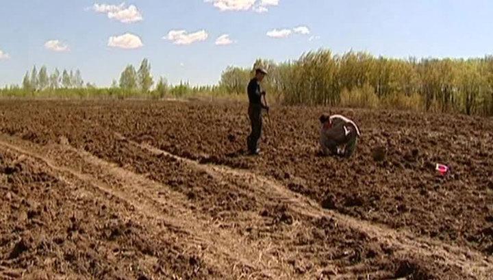 В 2017 году каждому дагестанцу дадут гектар земли. Но только на Дальнем Востоке