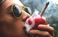 США официально признали: марихуана убивает раковые клетки