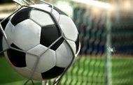 Родителей юных футболистов из Норвегии могут оштрафовать за участие в драке