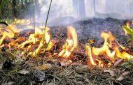 В Дагестане ожидается чрезвычайная пожароопасность