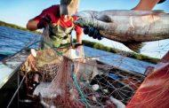 С дагестанских браконьеров взыскано свыше 3 млн 600 тысяч рублей штрафов