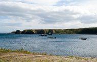 Япония рассматривает возможность договора с передачей РФ двух Курильских островов