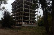 Активисты ОНФ в Дагестане установили, что в Эльтавском лесу продолжается незаконная вырубка деревьев