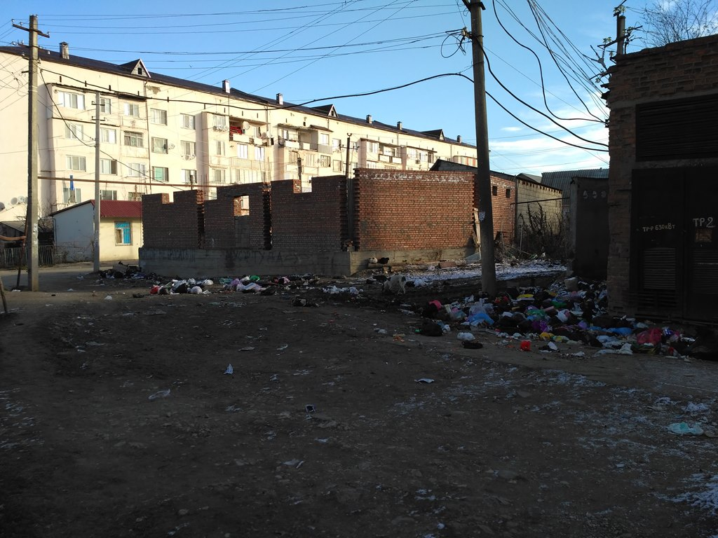 Активисты ОНФ призывают власти Хасавюрта устранить нарушения санитарных норм