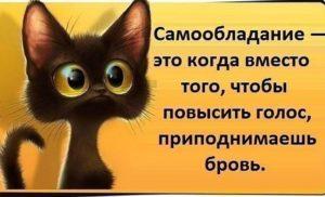 Крики  Абдулхабирова по плачу  Бисавалиева